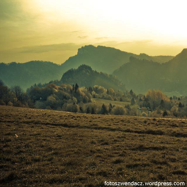 Widok z Palenicy (Szczawnica)