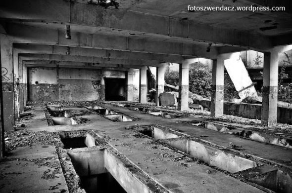 Kozłów - ruiny zakładów zbożowych