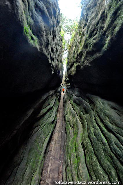 Góry stołowe - Szczeliniec- Błędne skały