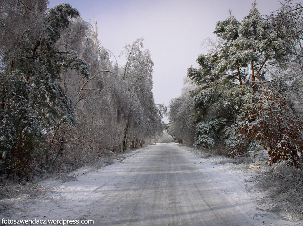 Pasmo Masłowskie zimą - Góry Świętokrzyskie